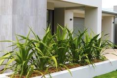 Ideias modernas do projeto do jardim da frente Imagem de Stock