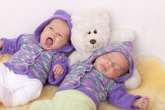 Identical baby twin sisters Royalty Free Stock Image