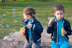 Identical twin brothers blow soap bubbles. Four year old identical twin boys in the meadow. They blow soap bubbles. They sit on the log Royalty Free Stock Photos