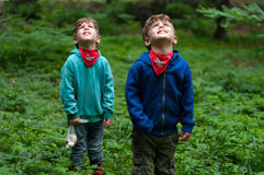 Identical twin brothers look to the sky Stock Photo