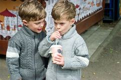 Identical twins are drinking tea in the park. Three year old identical twins are drinking tea in the park. One of the brothers holds a paper cup with a straw royalty free stock images