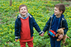 Identical twins holding hands. Four year old identical twin brothers holding hands. They stand in the flower meadow Stock Photos