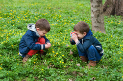 Identical twins playing photographer. Four year old identical twin brothers play with Stock Image