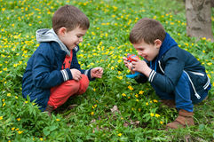 Identical twins playing photographer. Four year old identical twin brothers play with Stock Photography