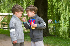 Identical twins with popcorn in the park. Three year old identical twins with popcorn. Boys are dressed in knitted sweaters with zipper. Clothing grey in Royalty Free Stock Image