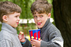 Identical twins with popcorn in the park. Three years old boys with popcorn. Boys are dressed in knitted sweaters with zipper. Clothing grey in different shades Stock Photos