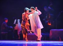 Identidade da sorte- de Xpress do drama da dança do mistério-tango Fotos de Stock Royalty Free