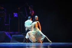 A identidade de assento- da senhora do drama da dança do mistério-tango Foto de Stock Royalty Free