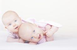Identieke baby tweelingzusters royalty-vrije stock fotografie