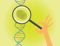 Identificación por huellas digitales de la DNA y ejemplo conceptual de la prueba ilustración del vector