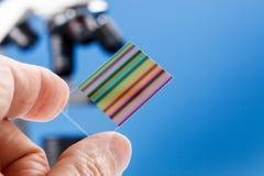 Identificación por huellas digitales genética de la cromatografía Imagenes de archivo