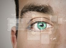 Identification of eye Royalty Free Stock Photo