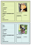 Identification for pet Stock Photo