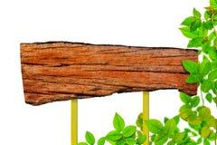 Identifichi gli alberi di verde di struttura e l'isolato di legno della pianta della foglia fotografia stock libera da diritti