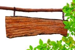 Identifichi gli alberi di verde di struttura e l'isolato di legno della pianta della foglia Fotografie Stock Libere da Diritti