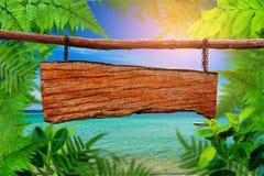 Identifichi gli alberi e la pianta verdi di legno della foglia sulla spiaggia fotografie stock libere da diritti