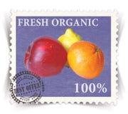Identifichi per vari annunci di prodotti biologici freschi stilizzati come bollo della posta fotografia stock