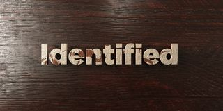 Identified - grungy wooden headline on Maple  - 3D rendered royalty free stock image. This image can be used for an online website banner ad or a print Vector Illustration