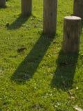Identifiez-vous en bois l'herbe moulue Images libres de droits