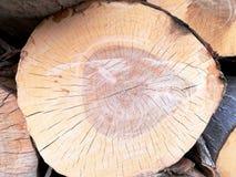 Identifiez-vous en bois une pile image libre de droits