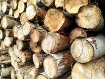 Identifiez-vous en bois une pile photo stock