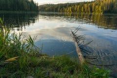Identifiez-vous sec la rivière images stock