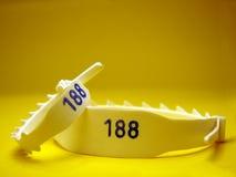 Identifikation-Armband Stockfotografie