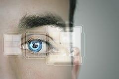 Identifizierung des Auges Lizenzfreie Stockfotos