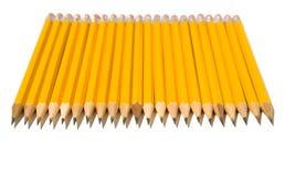 Identische Reihe der gelben Bleistifte Lizenzfreies Stockbild