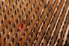 Identische schwarze Graphitbleistifte und ein roter Bleistift Stockfotos