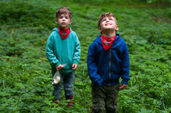 Identische Zwillingsbrüder in den Walddickichten Stockfotos