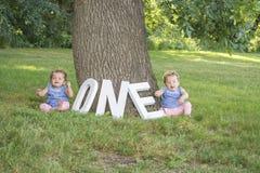 Identiska tvilling- systrar som sitter i gräset Arkivfoton