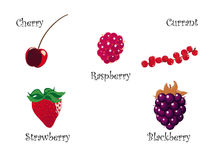 Identiteitskaart rood fruit Vector Illustratie