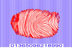 Identity. Finger print within bar code Stock Photos