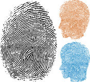 Identity fingerprint Stock Photography