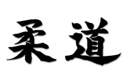 Ideogrammi di judo - Horizo semplice Fotografie Stock Libere da Diritti