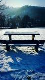 Idila зимы Стоковое фото RF
