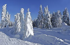 Idilic mountain winter landscape Royalty Free Stock Photo