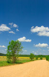 Idilic rural landscape. With green grass field, blue sky, fluffy clouds and road Stock Image