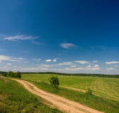 Idilic rural landscape. With green grass field, blue sky, fluffy clouds and road Royalty Free Stock Image