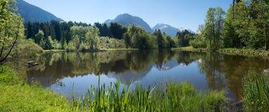 Idilliaco attracchi il lago vicino ad Oberstdorf ed osservi alle alpi di allgau Immagini Stock Libere da Diritti