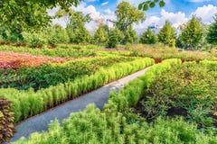 Idillic garden inside Gorky Park, Moscow, Russia Stock Photos