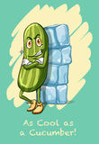 Idiom as cool as cucumber Royalty Free Stock Photo
