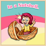 Idiom in a nutshell Royalty Free Stock Image