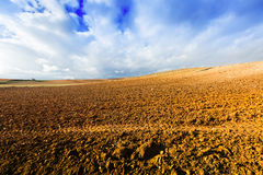 Idle field. In Europe at sunny autumn day Stock Images