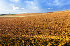 Idle field. In Europe at sunny  day Stock Photos