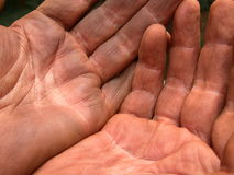 Idle Hands I. Hands soiled by work Stock Image