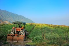 Idle. Prynne tribe in Hsinchu, Taiwan, the mountains in winter, idle backhoe quietly lying in the garden royalty free stock photos