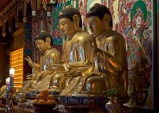 Idoles au temple de Haedong Yonggungsa, Busan Images stock