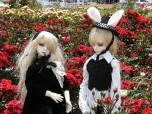 Idoles des couples dans une roseraie Photographie stock libre de droits